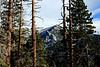 Lily Rock, Tahquitz Peak<br /> San Jacinto Mountains, Suicide Rock Trail<br /> 27 Nov 2010