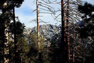 Tahquitz Ridge San Jacinto Mountains, Suicide Rock Trail 27 Nov 2010
