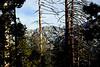 Tahquitz Ridge<br /> San Jacinto Mountains, Suicide Rock Trail<br /> 27 Nov 2010