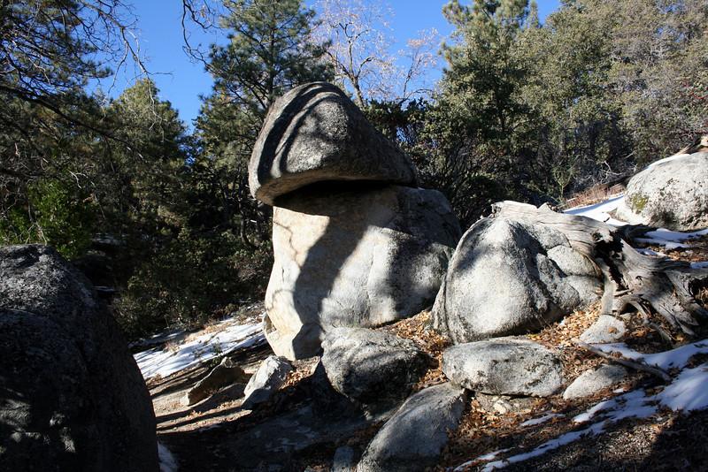 San Jacinto Mountains, Deer Springs Trail<br /> 27 Nov 2010