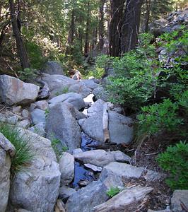 Lily Creek, Deer Springs Trail, Idyllwild, CA 23 Jun 2007