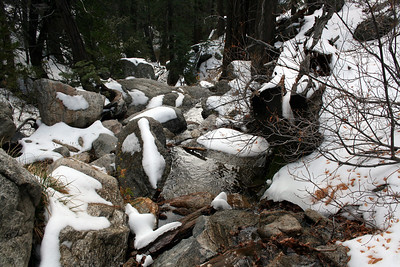 Marion Creek San Jacinto Mountains, Suicide Rock Trail 27 Nov 2010