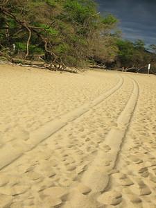 HI 2011 Maui 375