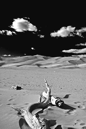 CO 2008 10 Road Trip (40) bw