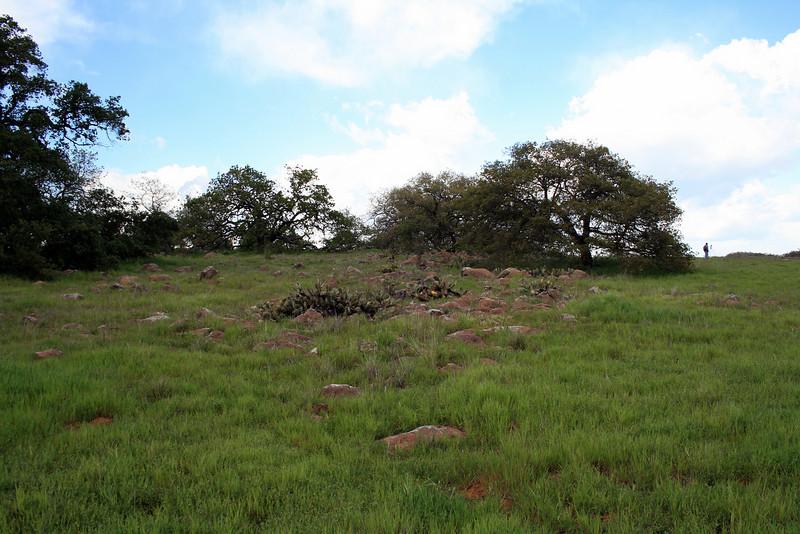 Santa Rosa Plateau Ecological Reserve, 16 Mar 2008