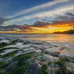 """""""Capitola Winter Sunset"""" I took this last weekend while down in Capitola for sunset near Pleasure Point, California. The low tide had the seaweed that made for an interesting foreground. Jack O'Neill's (O'Neill surf shops) house is there at the point in the background (told to me by local Santa Cruz expert, Sean McLean Photography) The water was swirling around while the clouds gave a nice glow and silhouette of the palm trees and beaches along the coastline. Who wants to plunk down there chair here and hang out for sunset (besides me!). Feel free to share and like if you enjoy it. — at Pleasure point."""