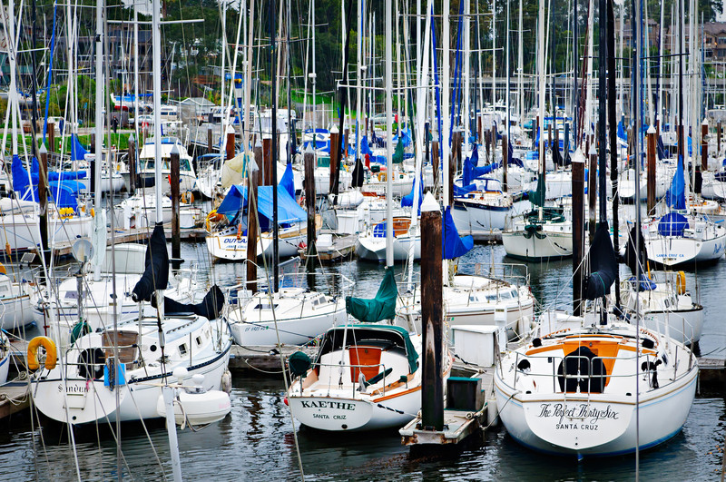 Santa Cruz Yacht Club and Harbor.  Sailboats along the docks at the Santa Cruz Yacht Club