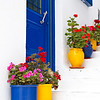 Potted flowers in Mykonos.