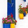 Potted flowers in Mykonos.