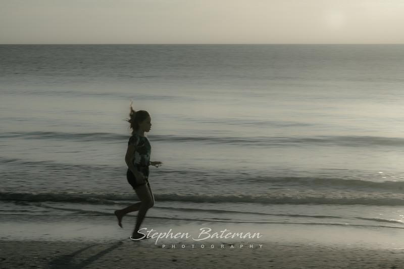 Sarasota Florida 12_14_2012