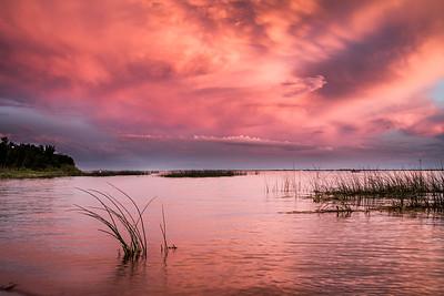 Jackfish Lake sunset reeds