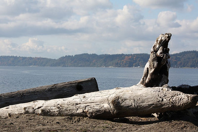 View from the new Mukilteo park