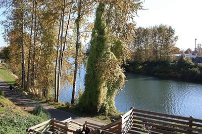 Riverwalk area in Snohomish