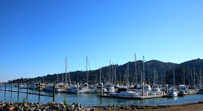 The marina in Sausalito in the San Francisco Bay Area.