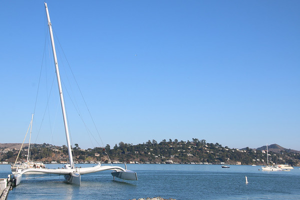 Enjoying the waters in Sausalito Harbor