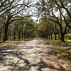 Wormsloe Historic Site