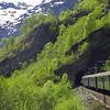 Flam Railway (Norwegian: Flamsbana), Aurland.