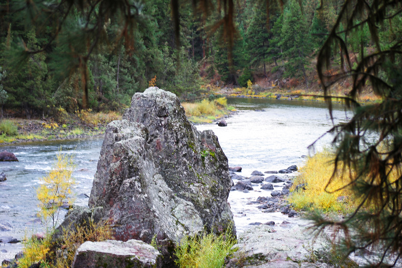 """Stone Face""... Where is my dinner? To the left too the left...Blackfoot River, Mt. in Fall."
