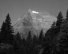 Breaching Mountain, Glacier National Park. Greyscale