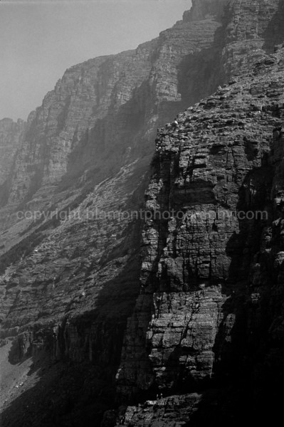"Two Hikers...Greyscale. In this image, they are very small just by the bottom in the center...gives you a perspective on the size and the Majesty of these Mountains, I believe called "" Rimrock ""  just by Logans Pass in Glacier National park Elev. @ about 8000 ft. and they keep climbing! Hikers on this path have fallen off by loose rocks and others killed by falling rocks ! - ("