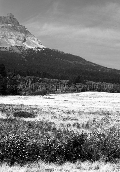 Two Dog Flats, East Glacier Nat. Prk. Where the Prairie meet the Rockies. Monochrome