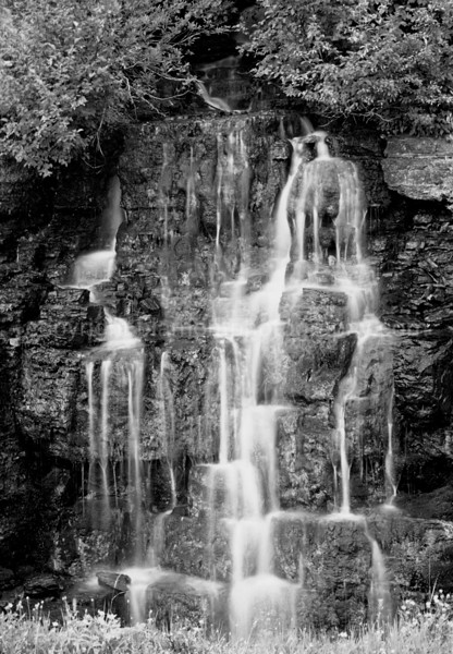 Weeping Wall, Glacier Nat. Prk. Greyscale. Along Going to the Sun Rd.