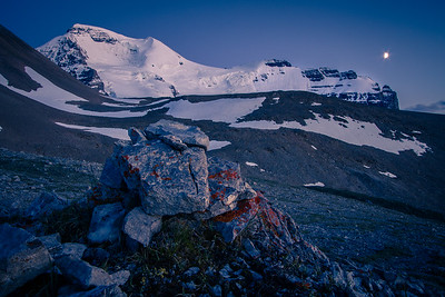 The meadows of Mt. Athabasca - here's another shot from up my evening up high on the Icefields Parkway. This meadow is several hundred metres above the valley bottom and out of view from the throngs of visitors to the Columbia Icefield Centre