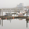 Marina in the Mist