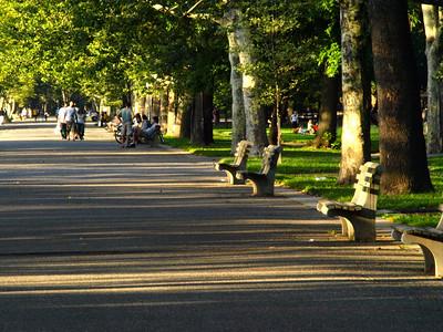 Riverside Park Afternoon