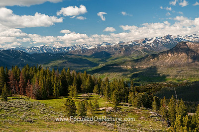 Beartooth Highway View