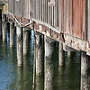 Bellingham Bay Pilings