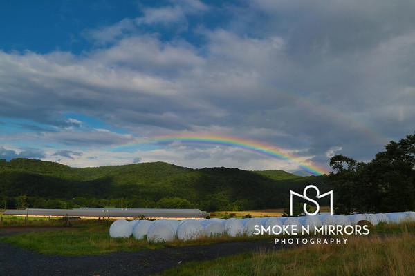 Pride's Rainbow