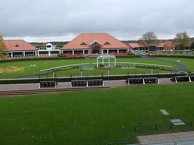Paddock at Newmarket racecourse