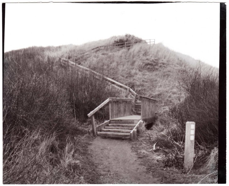 Ebey's Steps  VII, version 2
