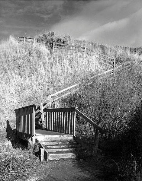 Stairway to Ebey