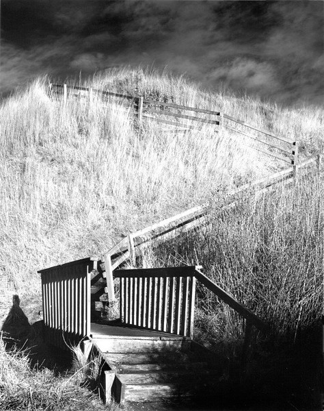 Steps to Ebey's Landing