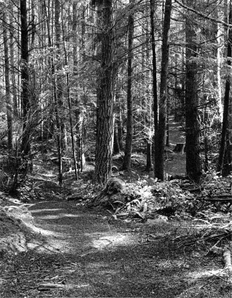 Kettles Trail