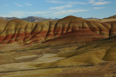 Painted Hills following Rain.