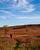 Skyline Drive, Big Meadows, in the fall