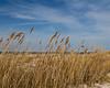 Beach scene 0325 (1 of 4)