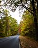 Skyline Drive in Fall