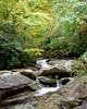 Grandfather Mountain Stream