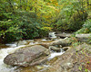 Stream on Grandfather Mountain, NC in Fall