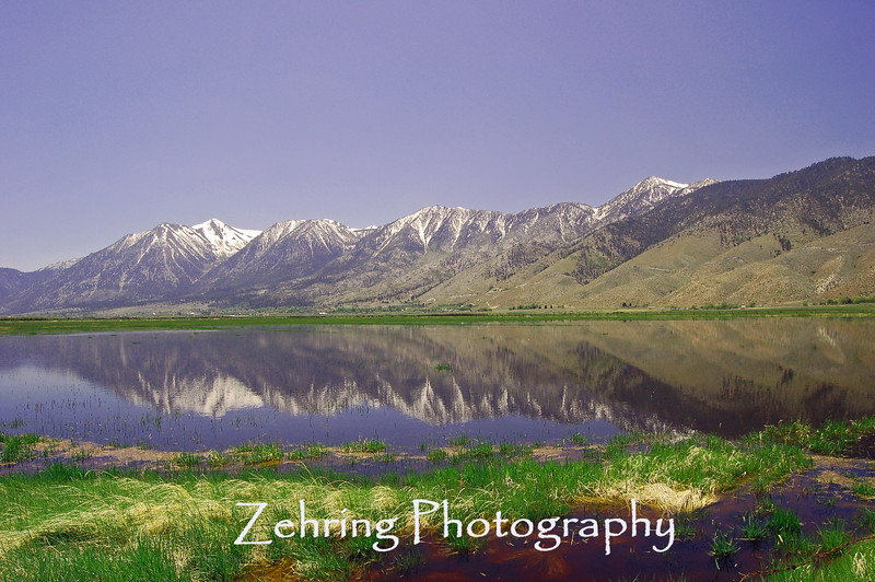 Spring snowmelt temporarily floods low land pastures creating a perfect reflection of the majestic Sierra Nevada Range.