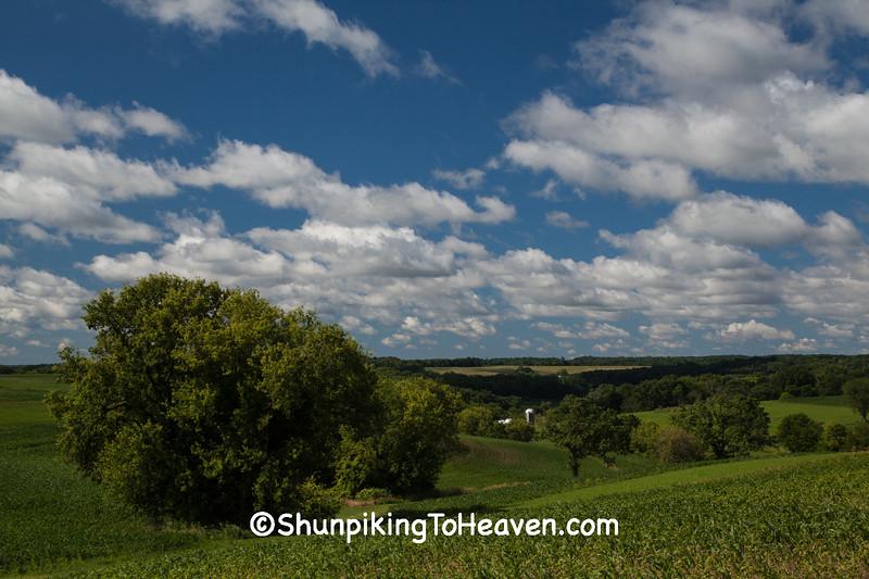 Rolling Farm Fields of Lafayette County, Wisconsin