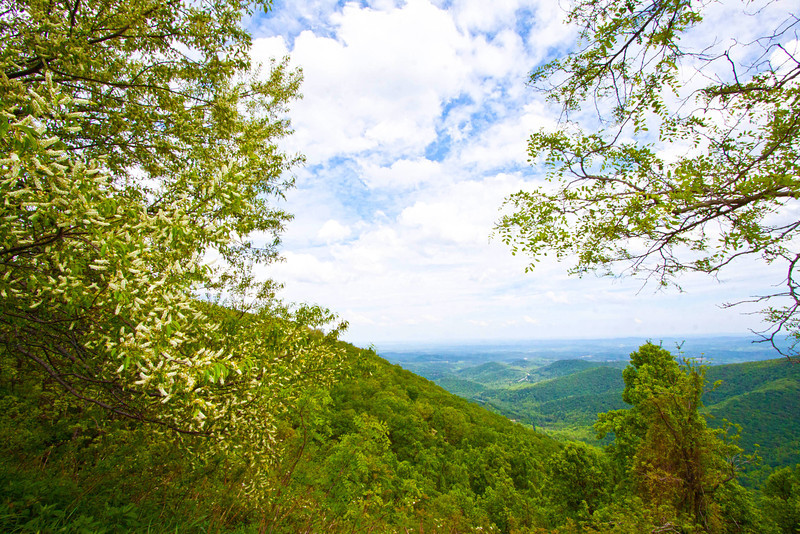 Scenic drive along Blue Ridge Parkway