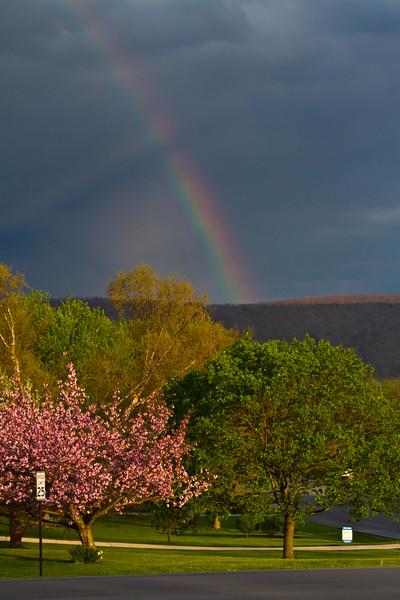 Rainbow 0426-1 (1 of 7)