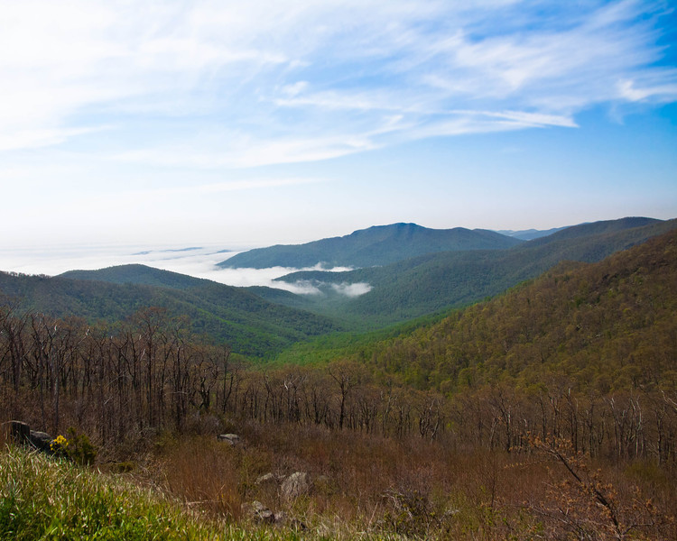Fog on the Mountain, Skyline Drive, Virginia