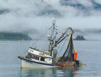 Bounty Of The Sea