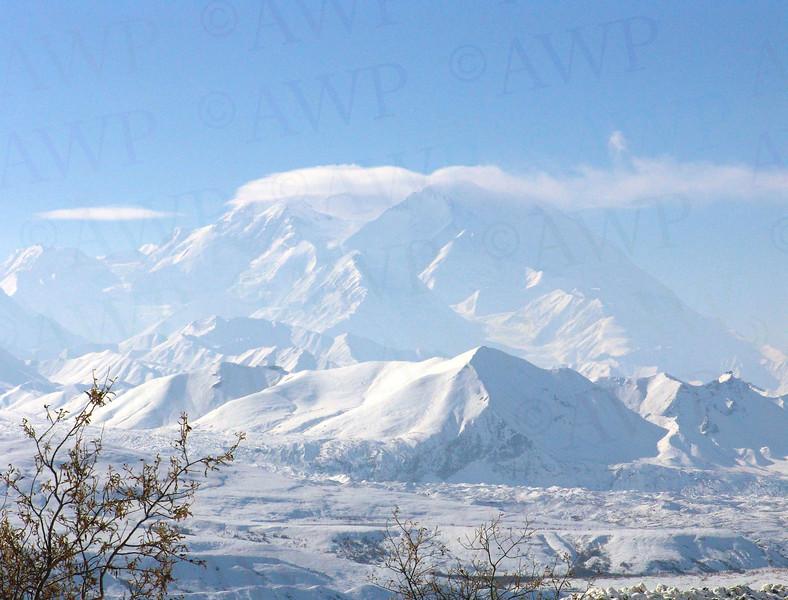 Denali In Winter